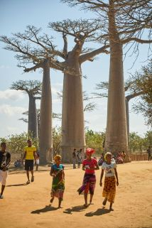 0066_Inauguration_Baobabs_Land_18-08-24